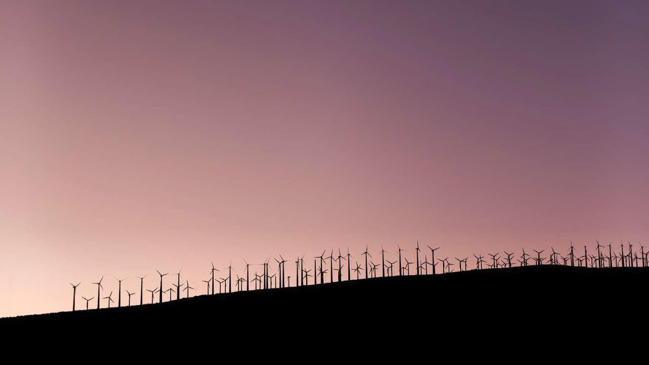 Rüzgar Çiftliği